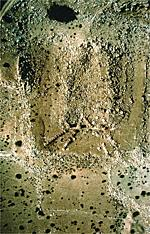Thumbnail for 1993 Aerial
