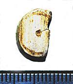 Thumbnail for 19810212.jpg
